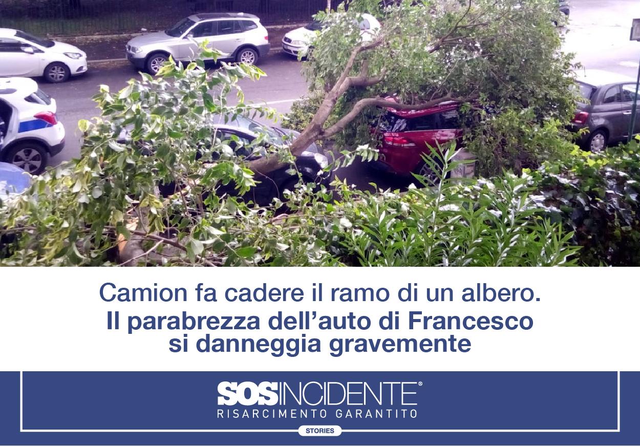 SOSIncidente_Caduta_Ramo_Parabrezza