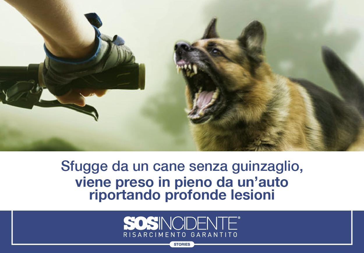 SOSIncidente_Post_Storia_8_21